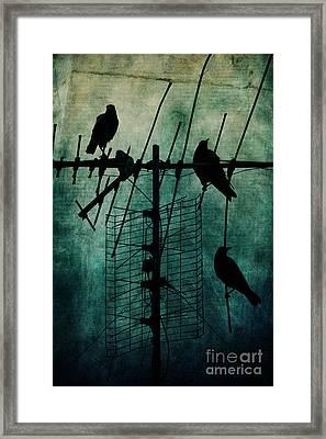 Silent Threats Framed Print by Andrew Paranavitana