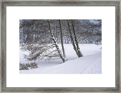 Silent Winter Morning Framed Print by Jenny Rainbow