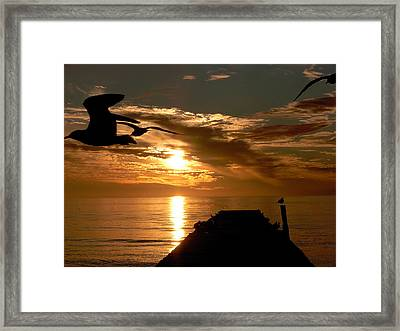 Silhouette Framed Print by Amanda Vouglas
