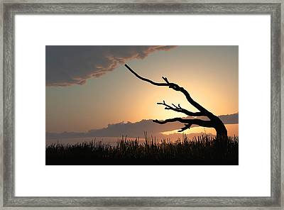 Silhouette Framed Print by Bob Orsillo