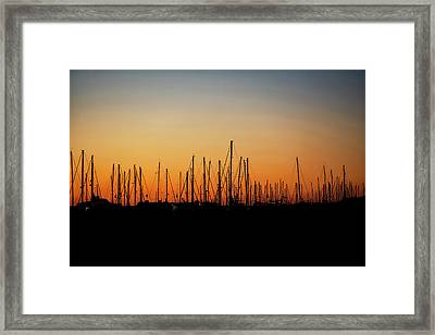 Silhouette Of Sailboats At Sunrise Framed Print by Susan Schmitz