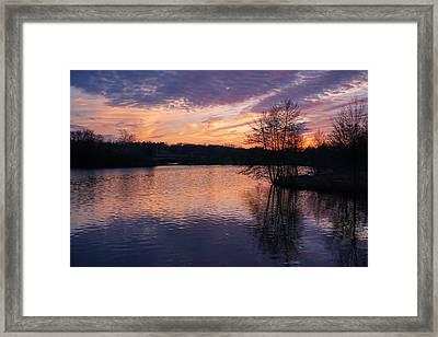 Silhouette Of Spring Sunset Framed Print by Rachel Cohen