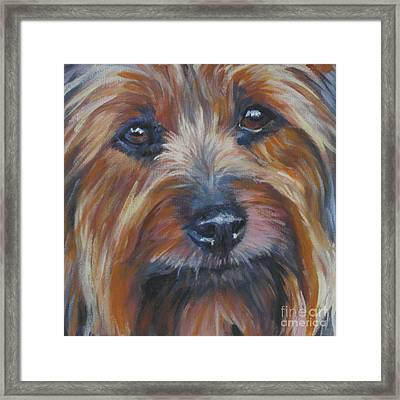 Silky Terrier Framed Print by Lee Ann Shepard