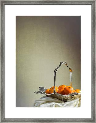 Silver Fruit Basket Framed Print by Amanda Elwell