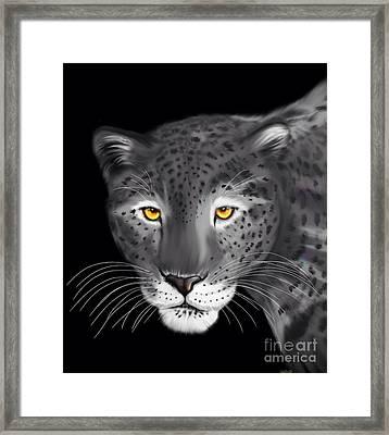Silver Jaguar  Framed Print by Nick Gustafson