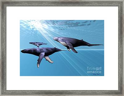 Silver Sea Framed Print by Corey Ford