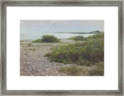 Silver Shoreline Westport Ma Framed Print by Bill McEntee