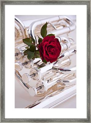 Silver Tuba With Red Rose On White Framed Print by M K  Miller