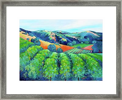 Silverado Trail Vineyard Framed Print by Stephanie  Maclean