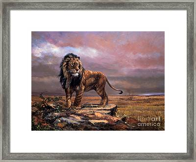 Simba Of The Plains Framed Print by Silvia  Duran