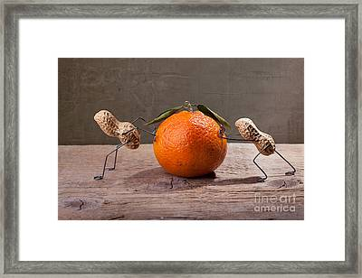 Simple Things - Antagonism Framed Print by Nailia Schwarz