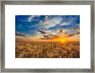 Simplicity Framed Print by Thomas Zimmerman