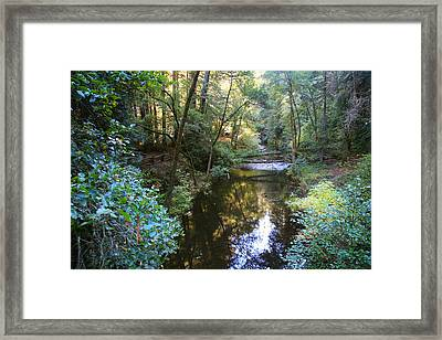 Since That Cold November Day Framed Print by Laurie Search