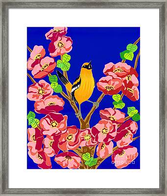 Singing Oriole Framed Print by Lucyna A M Green