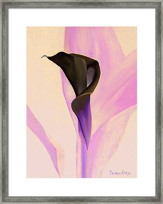 Single Calla Lily Framed Print by Linda Tenukas