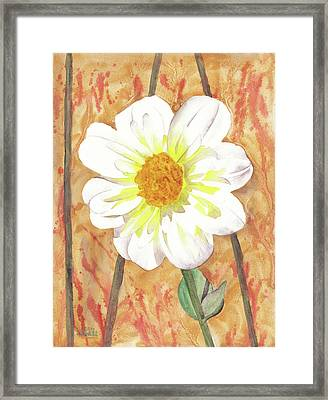 Single White Flower Framed Print by Ken Powers