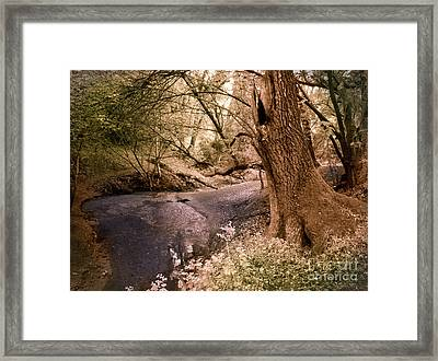Sit And Dream Awhile Framed Print by Laura Iverson