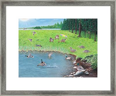 Sitting Ducks Framed Print by Cindy Lee Longhini