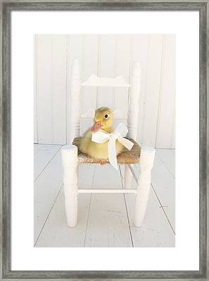 Sitting Pretty Framed Print by Amy Tyler