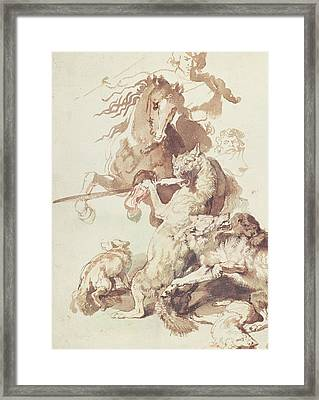 Sketch For A Wolf Hunt Framed Print by Peter Paul Rubens