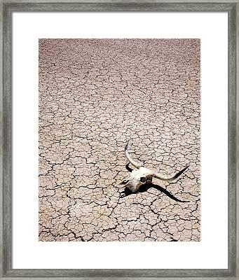 Skull In Desert Framed Print by Kelley King