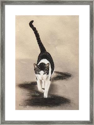 Sleek Framed Print by Nanybel Salazar