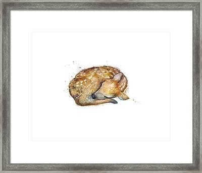 Sleeping Fawn Framed Print by Amy Hamilton