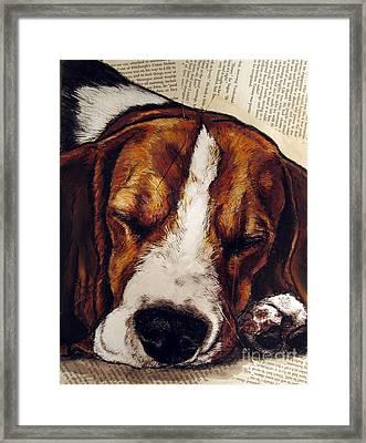 Sleepy Beagle Framed Print by Christas Designs