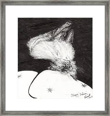 Sleepy Belina Framed Print by Vincent Alexander Booth