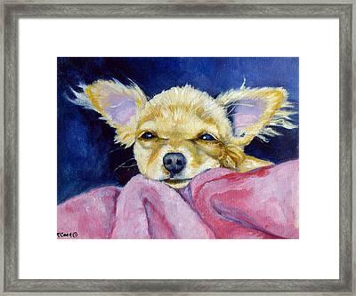 Sleepy Chi - Chihuahua Framed Print by Lyn Cook