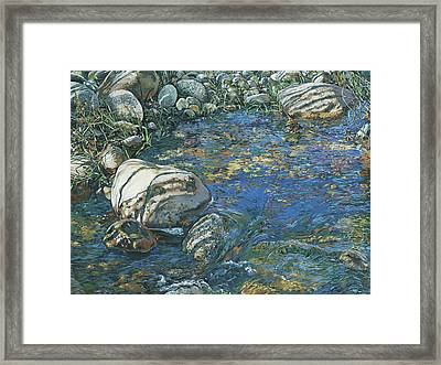 Slicky Pool Framed Print by Nadi Spencer