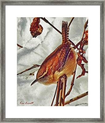 Slim Pickens, Carolina Wren Framed Print by Ken Everett
