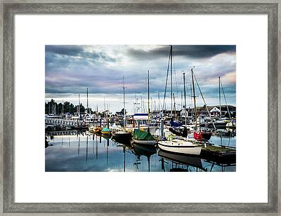 Slips At Point Hudson Marina Framed Print by TL Mair