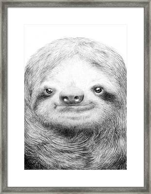 Sloth Framed Print by Eric Fan