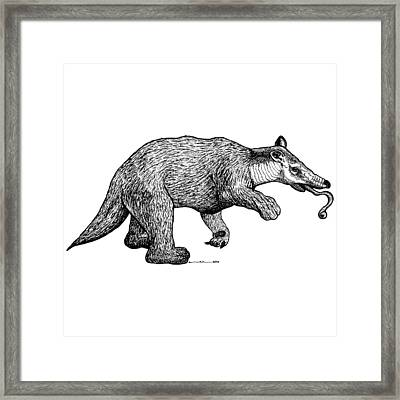 Slothbear Framed Print by Karl Addison