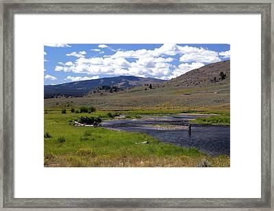 Slough Creek Angler Framed Print by Marty Koch