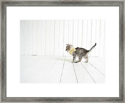 Small Framed Print by Amy Tyler
