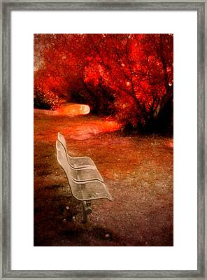 Small Bench In A Red World Framed Print by Tara Turner