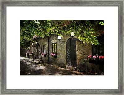 Small Town Idyll Framed Print by Gun Legler