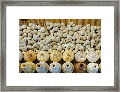 Small Wooden Flasks Framed Print by Yali Shi