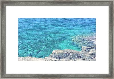 Smdl Framed Print by Laura Pia Giovanna Morocutti