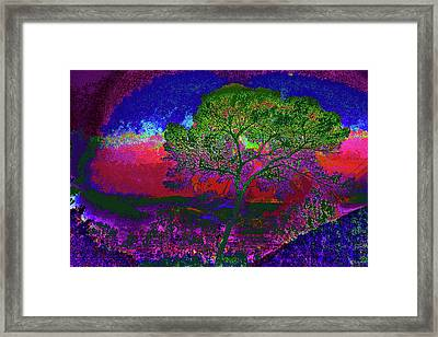 smell the color of Brand Park Framed Print by Kenneth James