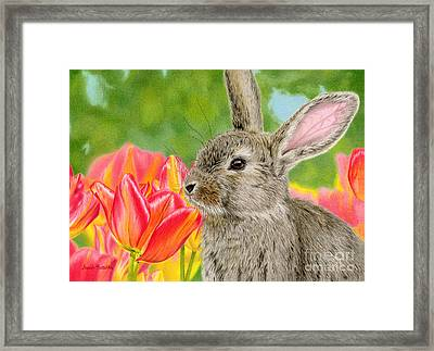 Smell The Flowers Framed Print by Sarah Batalka