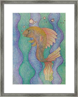 Smiling Fish  Framed Print by Clara Brayton