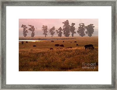 Smoke Over Lamar Valley Framed Print by Adam Jewell