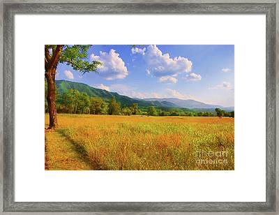 Smokies In The Early Fall Framed Print by Geraldine DeBoer