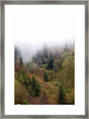 Smoky Mount Vertical Framed Print by Marty Koch