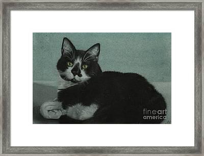 Smudge Framed Print by Jennifer Watson
