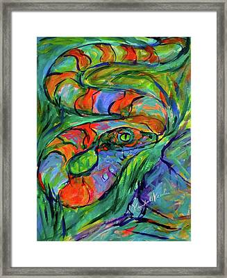 Snake Curve Stage One Framed Print by Kendall Kessler