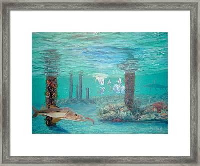 Snook Painting Framed Print by Ken Figurski